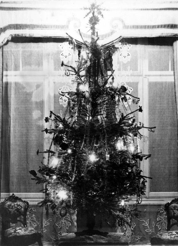 geschm ckter weihnachtsbaum weihnachtsbaum chroniknet private bilder fotos des jahrhunderts. Black Bedroom Furniture Sets. Home Design Ideas